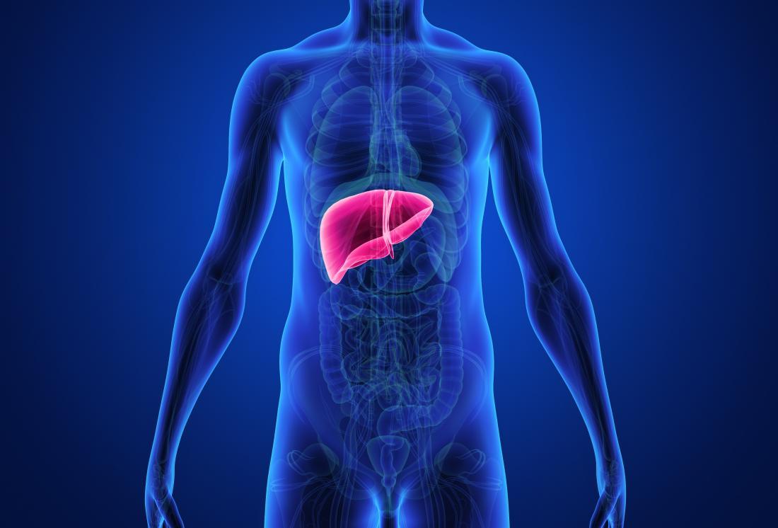 9個肝臟保養需知,找出隱蔽的「肝臟殺手」從此有一副好心肝