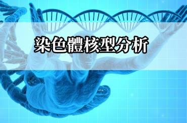 染色體核型分析