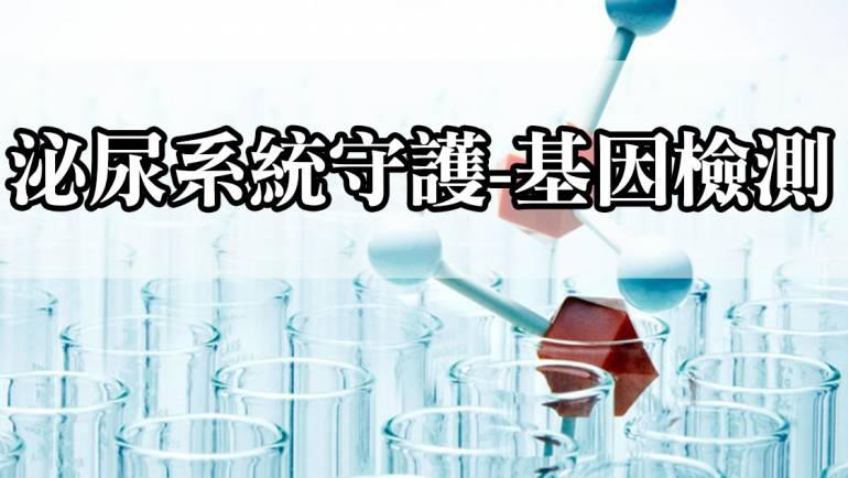 泌尿系統守護-基因檢測