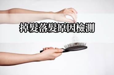 掉髮落髮原因檢測